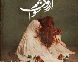 دانلود رمان بدون سانسور pdf جدید